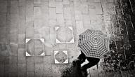 فوائد المطر للإنسان