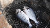 طرق شوي السمك