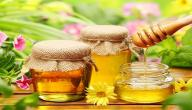 أهمية العسل