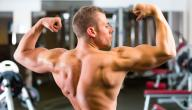 Strengthen the back muscles