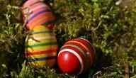 طرق تلوين البيض بالألوان الطبيعية