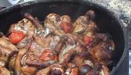طريقة عمل زرب الدجاج