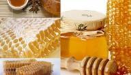 ما هي فوائد غذاء ملكات النحل