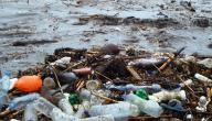 طرق الوقاية من التلوث