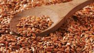 ماهي فوائد بذرة الكتان للرجيم