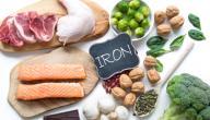 أهمية الحديد لجسم الإنسان