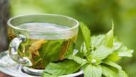 فوائد الشاي الأخضر بدون سكر