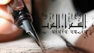 أهم شعراء العرب