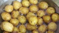 كيف نسلق البطاطا
