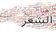 كيف نحافظ على اللغة العربية