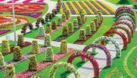 أين تقع حديقة الزهور في دبي