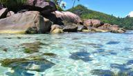 أين تقع جزر سليمان