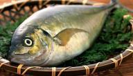 كيف تعرف السمك الطازج