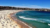 أين يقع شاطئ بوندي