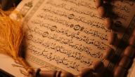 كم جزء في القرآن
