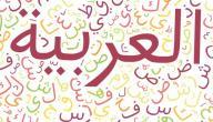 من إخترع اللغة العربية