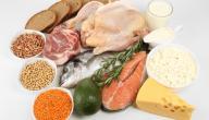ما هو نظام رجيم البروتين