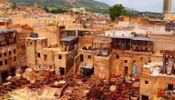 تعريف بمدينة فاس