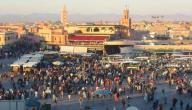 بماذا تشتهر مدينة مراكش