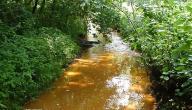 تعريف تلوث التربة