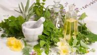 علاج تأخر الحمل بالأعشاب