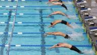 بحث عن رياضة السباحة