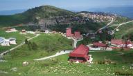 أين تقع دولة ألبانيا