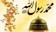 كيف توفي النبي محمد عليه الصلاة والسلام