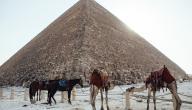 كيف بنى الفراعنة الأهرامات