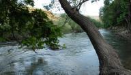 أين يقع نهر الليطاني
