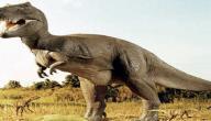 كيف انقرض الديناصور