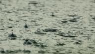 كيف نستفيد من مياه الأمطار