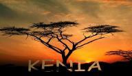 أين تقع كينيا على الخريطة