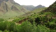 أين يقع وادي حوران