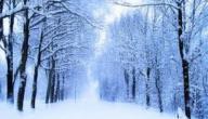 عبارات جميلة عن فصل الشتاء