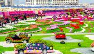 أين موقع حديقة الزهور في دبي