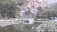 أين يقع وادي دفا