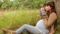 كل ما يضر الحامل