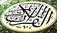 كيف تم تسمية سور القرآن