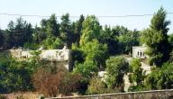 أين تقع قرية عين كارم
