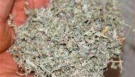 فوائد عشبة الهند شعيرة
