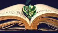 كيف يكون حب الرسول