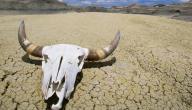 أين تقع صحراء وادي الموت