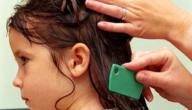 كيف أقضي على قمل الشعر