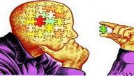 كيف تبني شخصيتك الفكرية