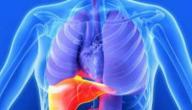 كيفية التخلص من الدهون على الكبد