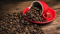 كيف تصنع القهوة
