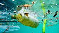 بحث حول التلوث
