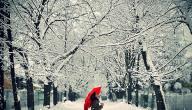 كلمات جميلة عن الشتاء والمطر