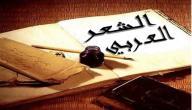 أنواع الشعر العربي